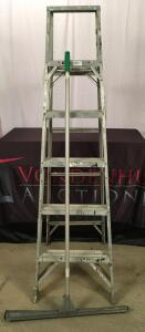 6 Ft. Aluminum Ladder and Squeegee