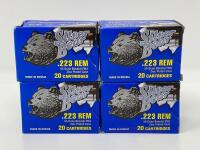 Silver Bear .223 Ammunition