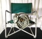 Vintage Canvas Collapsible Outdoor Chair & Tent